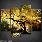 JAPANESE MAPLE TREE BONSAI CASCADE CANVAS PRINT ART PICTURE READY TO HANG
