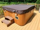 2004 Sundance Maxxus Hot Tub Portable Spa