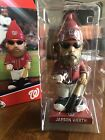 This Jayson Werth Chia Pet Giveaway Will Grow on You 22