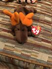 RETIRED Ty Beanie Baby CHOCOLATE MOOSE NO ERRORS With Tags RARE