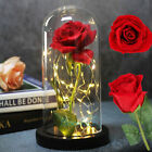 Galaxy Rose Flower In Dome Glass LED Night Light Valentines Day Xmas Decor Gift
