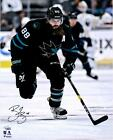 San Jose Sharks Collecting and Fan Guide 81