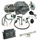 Lifan 150cc Engine Motor Kit For Dirt Pit Bike SSR SDG CRF50 XR70 80 CT110 KLX
