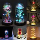 Beauty and the Beast LED Light Enchanted Rose in Glass Dome Mothers Day Gift US