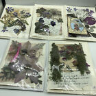 UNIQUE Set of 5 Handmade Greeting Gift Note Cards w Real Dried Flowers WOW