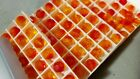 Authentic Swarovski 5000 Round FIRE OPAL Sealed 288pc Factory Pack