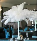 Wholesale white 100PCS 12 14 inches 30 35 cm ostrich feathers wedding
