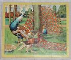 JIG SAW PUZZLE reversible GERMANY thick cardboard OSTRICH peacock BIRD vintage