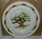 Vintage 70's Avon Great Oak 5th Anniversary Representative Collector Plate