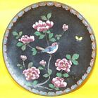 Vintage Japanese Cloisonné Plate, Bluebird in Blossoming Tree c.1900-6