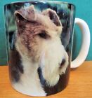 FOX TERRIER CUP   BY BARBARA AUGELLO DESIGN  1994   3 3/4