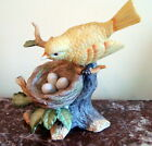 Hand Painted  ROYAL CROWN Yellow Bird in Tree with Eggs in Nest  J BYRON