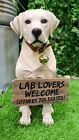Yellow Labrador Retriever Dog Statue W Jingle Collar and Sign Welcome Greeter