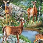 Wild Wings Cradle Rock Deer Scenic Buck Doe by Stream Cotton Fabric by the Yard
