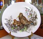 WOODCOCK! LARGE OVAL IRONSTONE GAME BIRD DINNER PLATE BY JOHNSON BROTHERS!