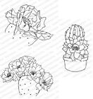 CACTUS Impression Obsession Cling Mount Rubber Stamps Stamping Craft Cardmaking