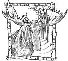 Unmounted Rubber Stamps Wildlife Alaska Moose Stamps Scenic Hunting Lodge