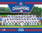 2016 Chicago Cubs World Series Champions Memorabilia Guide 23