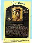 Ernie Banks Cubs Yellow Hall of Fame Autograph with COA