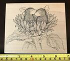 Stampa Rosa House Mouse Sunflower Smooch rubber stamp NEW