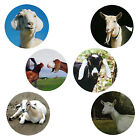 Goat Magnets 6 Happy Goats for your Collection A Great Gift
