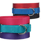Dog Puppy Martingale Nylon Collar Guardian Gear 6 Colors 3 Sizes
