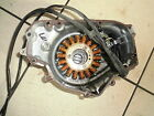 e5. Kawasaki EL 250 alternator stator winding with Engine Cover Alternator