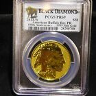 2013 W 50 GOLD BUFFALO REVERSE PROOF 1oz PCGS PR69 BLACK DIAMOND