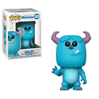 Ultimate Funko Pop Monsters Inc Figures Checklist and Gallery 10
