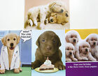 PUPPY THEMED BIRTHDAY CARD Recycled Paper Greetings RETRIEVER  LABRADOR LAB DOG