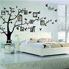 Large Family Tree Wall Decal Peel  stick vinyl sheet easy to install apply for