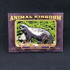 Hunting with 2012 Goodwin Champions Animal Kingdom Patch Cards 12