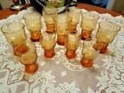 Vintage Libbey Amber Drinking Glass Daisy Flower Country Garden 11 TOTAL (61)