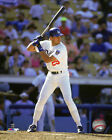 Los Angeles Dodgers Collecting and Fan Guide 4