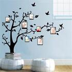 Family Photo Frame Tree Sticker Living Room Wall Decals DIY Wall Decor Removable