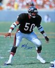 Mike Singletary Cards, Rookie Cards and Autographed Memorabilia Guide 37