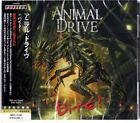 ANIMAL DRIVE-BITE!-JAPAN CD BONUS TRACK F83