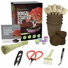 Bonsai Starter Kit + Tool Kit The Complete Kit to Easily Grow 4 Bonsai Tree