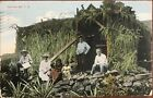 1910 Post Card Of A Native Grass Hut Honolulu Hawaii