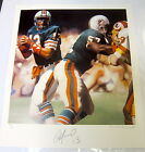 Miami Dolphins Collecting and Fan Guide 70