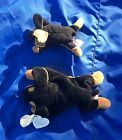 Set of 6 retired Beanie Babies (5 w/tags)--includes Teenie Beanie Doby and more!