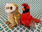 TY Beanie Babies: CROONER the Red Cardinal & TWILIGHT the Owl! MWMT!
