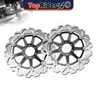 Front Brake Disc Rotor 2 Pcs Fit Laverda GHOST 650 96-99 96 97 98 99