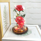 HOT Romantic Flower Rose In Glass LDE Light Mothers Day Valentines Day Gift