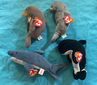 Ty Beanie Babies Sea Creatures - Lot Of 4 - Jolly, Slippery, Crunch,