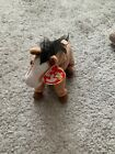 TY Beanie Baby - OATS the Horse (7 inch) - MWMTs Stuffed Animal Toy
