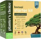 Bonsai Starter Kit The Complete Growing Kit to Easily Grow 4 Bonsai Trees