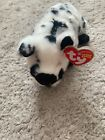 Ty Beanie Baby - STUBBY the Black and White Pig (6 Inch) MINT with MINT TAGS