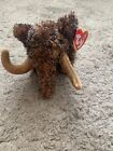 Ty Beanie Baby - GIGANTO the Wooly Mammoth (6 Inch) MINT with MINT TAGS