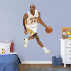 2016 Fathead Elite NBA Wall Decals 7